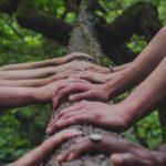 Kädet puunrungolla yhdessä