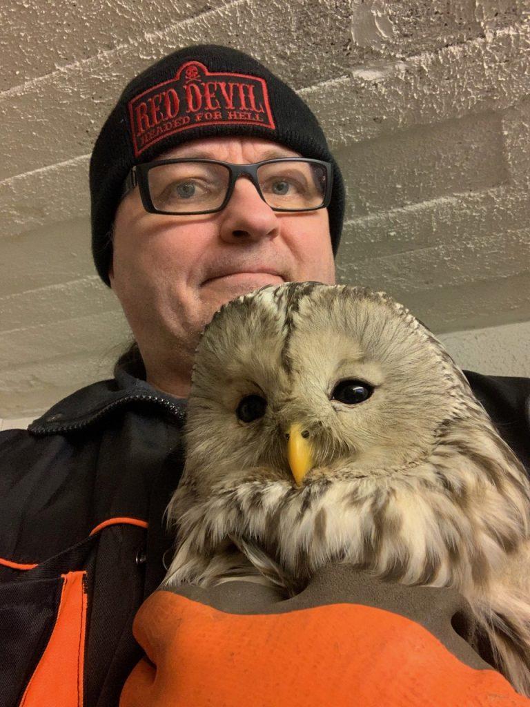 Jarmo Lautamäki Mikkelistä pitää sylissään pöllöä.